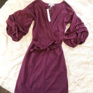NWT Stunning She & Sky Bell sleeve mini dress